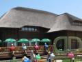 Камышовая крыша на на бревенчатом доме